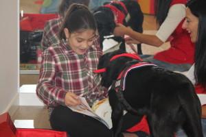 taller lectura asistida con perros 2015/9