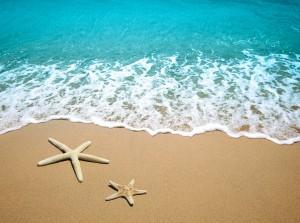 mar y estrelas de mar