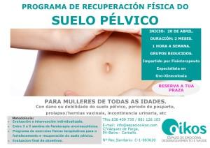 PROGRAMA DE RECUPERACION SUELO PELVICO 2017